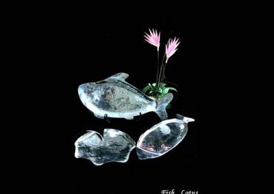 Fish lotus